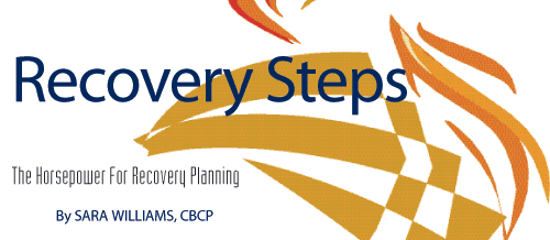 Recovery Steps: The Horsepower for Recovery Planning